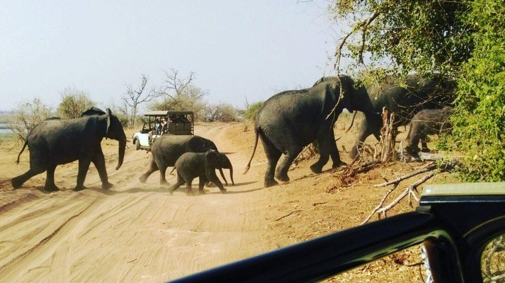 Top Destinos. África